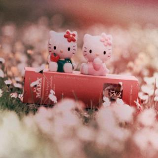 http://melle-lilyvia.cowblog.fr/images/HK2.jpg