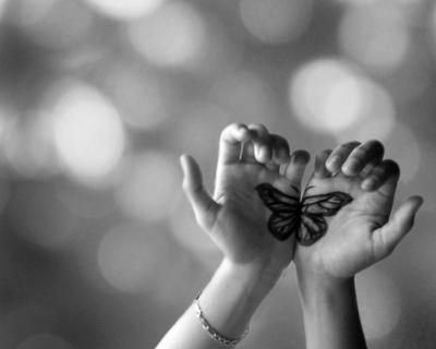 http://melle-lilyvia.cowblog.fr/images/Imagesdiverses/papillon.jpg